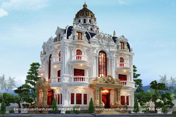 Lâu đài tân cổ điển đẹp mặt tiền 16m - Ảnh 1
