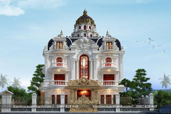 Lâu đài tân cổ điển đẹp mặt tiền 16m - Ảnh 2