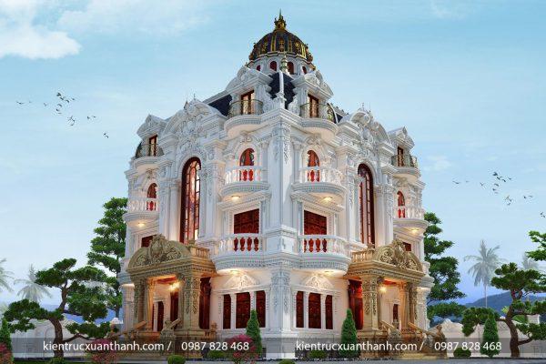 Lâu đài tân cổ điển đẹp mặt tiền 16m - Ảnh 3