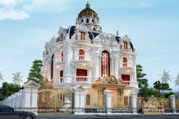 Lâu đài tân cổ điển đẹp mặt tiền 16m - Ảnh 4