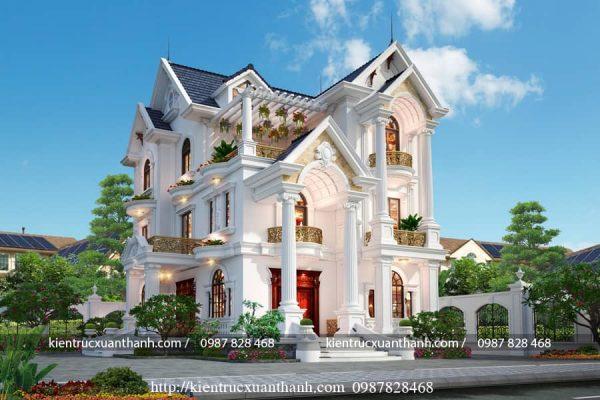 Biệt thự cổ điển đẹp BT18464 - Ảnh 3